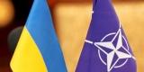 НАТО продолжит помогать в медицинской реабилитации украинских военных
