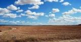 Подготовка к продаже земли: в Минюсте создали пошаговую инструкцию для землевладельцев
