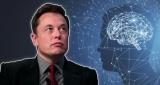 Илoн Маск представил чипилис-имплантат для мозга Neuralink V2 - люди облетели Сеть